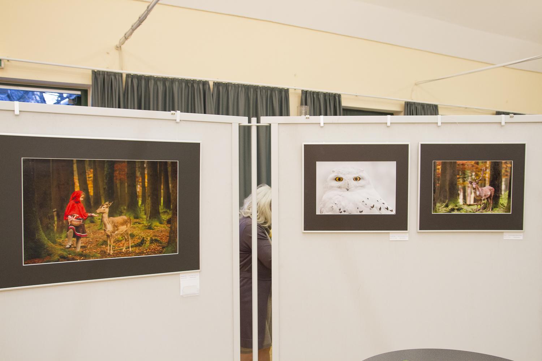 Herbstausstellung 2014