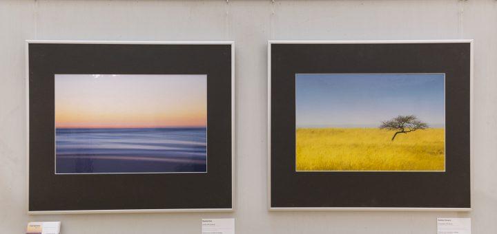 Herbstausstellung 2015